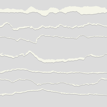 seamless paper: collection of seamless paper rips gray and white