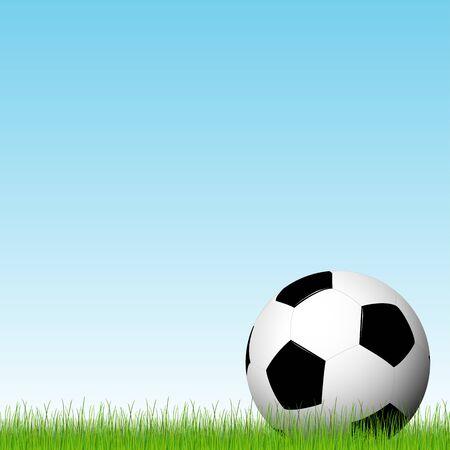 lying in: soccer ball lying in the grass with blue sky background