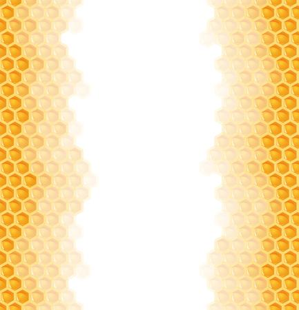 abeja reina: sin fisuras de naranja natural miel en panal lados izquierdo y derecho de fondo