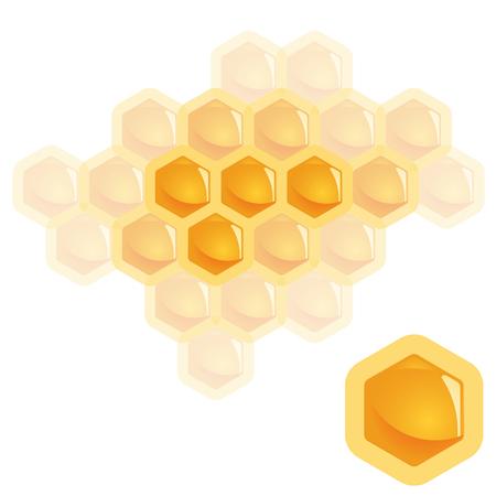 jointly: High detailed natural orange honey comb element symbolize togetherness
