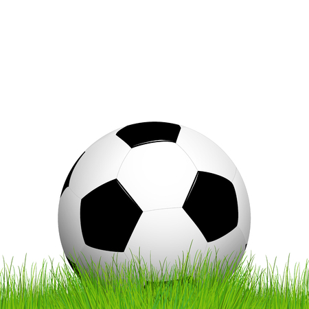 lying in: soccer ball lying in the grass with white background