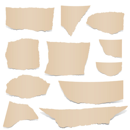 torn paper edges: Collection - brown paper scraps