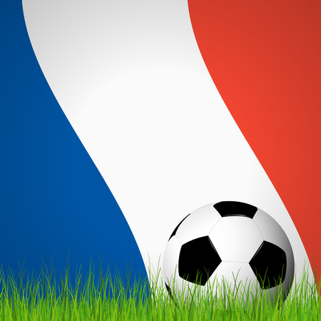 lying in: soccer ball lying in the grass in front of france flag