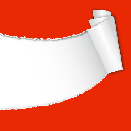 tore: Red torn open paper with paper curl and white space for text.