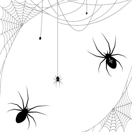 collection of different illustrated spider webs and some spiders black colored for Halloween layouts