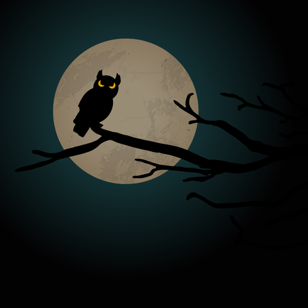 owl in front of full moon with scary illustrated elements for Halloween background layouts Illustration