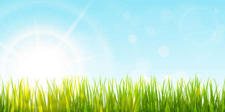 eps vector background template file of panorama green grass on lower side with sun beams for summer or spring designs