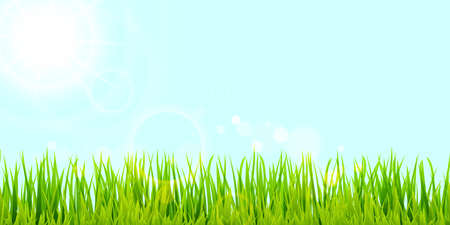 eps vector background template file of panorama green summer grass on lower side with sunbeams for summer or spring designs Çizim
