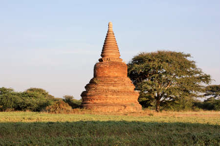 Ruins of a Pagoda in a field next to a tree and green plants in Bagan, Myanmar