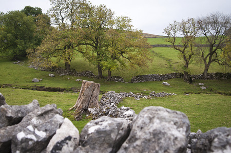dales: Yorkshire Dales Autumn view Stock Photo