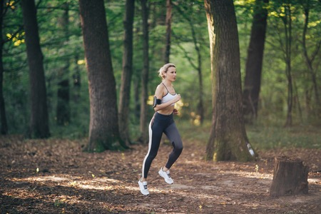 Young fitness sport woman running on the forest road in the morning Stock Photo