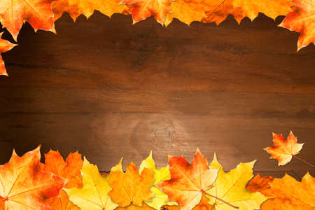 Autumn Board Framed with Leaves. Space for Text. Stock Photo