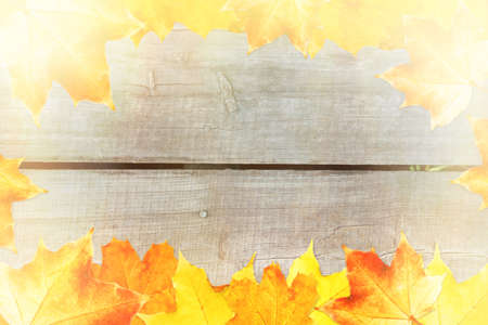 Autumn Background Framed with Leaves. Space for Text. Stock Photo