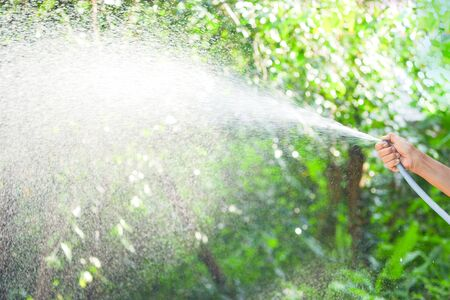 The womans hand holds the hose to spray water to the trees in the garden.