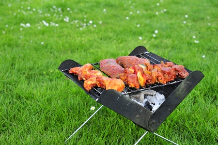 Grilling meat and vegetables in the park photo