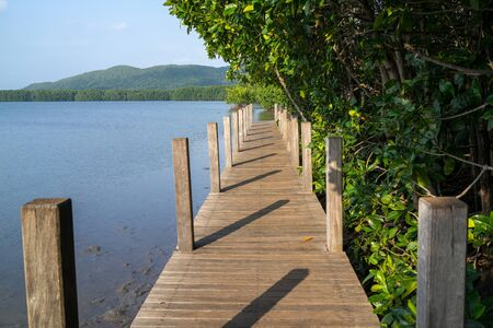 Wooden path in the middle of the blue sea and green mangrove forest. photo