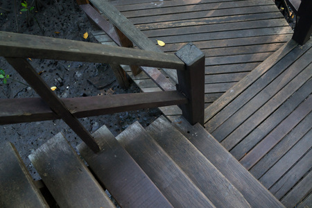 Wooden bridge and stairs in the deep mangrove forest. photo