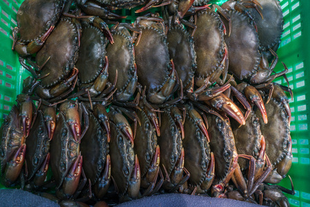 crab: Stack of fresh softshelled crabs in green basket. Stock Photo