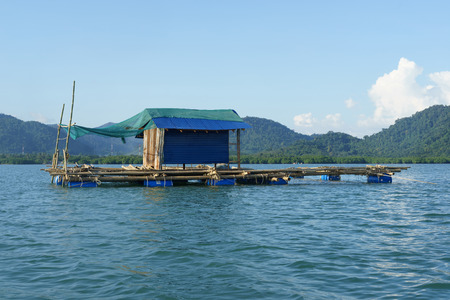 Bamboo raft floating on water in fish farm.