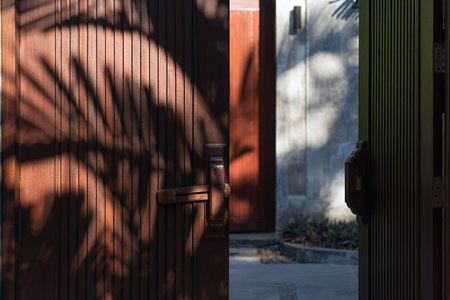 Open wooden doors with handle and shadow of palm trees.