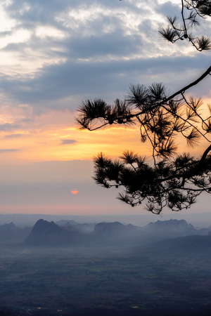 Silhouette of pine tree branches with dark mountain range and sunrise background.