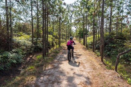 Asian female cyclist with pink backpack and shirt cycling through pine forest on dirt road.