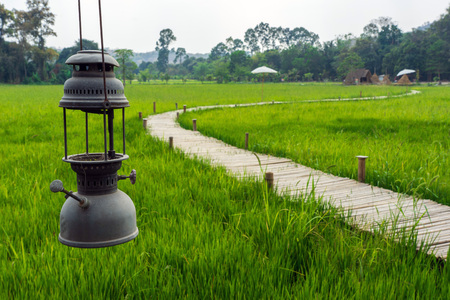 Old lantern hanging with bamboo bridge and green rice field background.