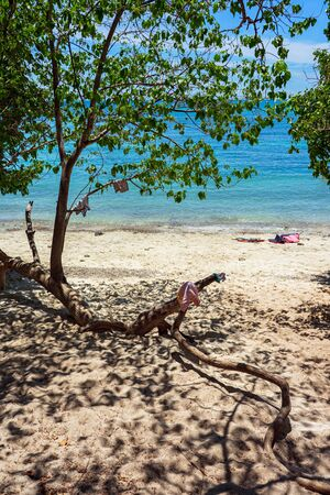 Trees with clothes and life jackets on sand beach with clear turquoise sea in the background.