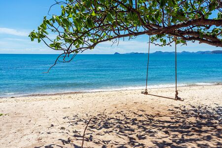 Wooden swing under green tree on sand beach with blue sea and sky background.