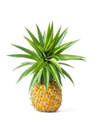 Beautiful  isolated pineapple Stock Photo