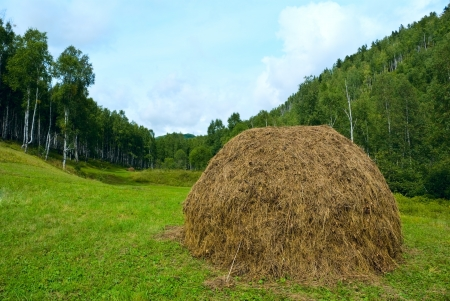 Landscape with haystack at nice day Stock Photo