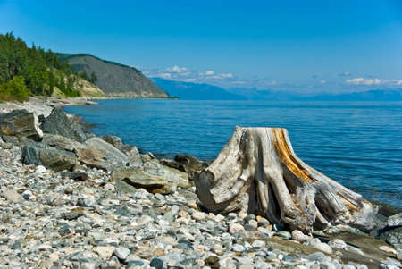 Stony beach with the stump in the foreground  Lake Baikal, Russia Stock Photo