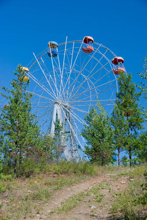Ferris wheel hid among the trees in the park