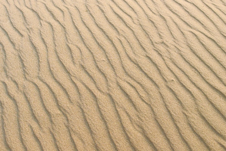 Waves of sand inflicted by wind, texture background wallpaper