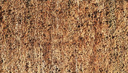 brine: Petrified brine in close-up Stock Photo