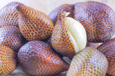salak: Exotic Salak Fruit Snake Fruit with rough scaly skin