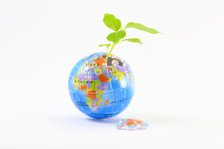 globe puzzle: Green Plant coming trough incomplete jigsaw puzzle on white background Stock Photo