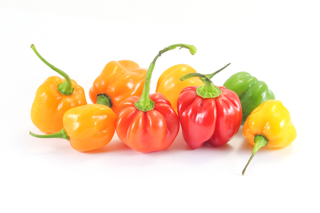 Hot spicy Habanero Chili Pepper on white background Stock Photo