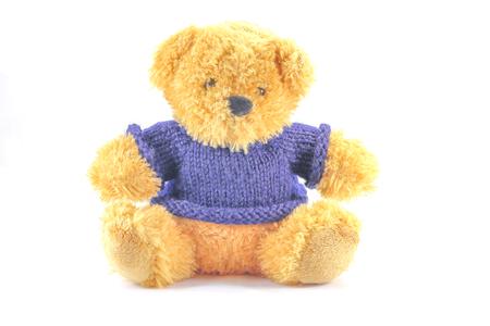 petit nounours en peluche portant un pull bleu photo - Petit Nounours