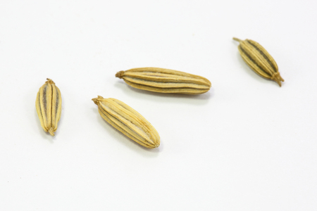 Dried Cumin Seeds Spice aromatic fragrant on white background Stock Photo