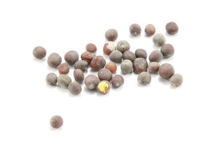 white back ground: Black Mastered Seed on white back ground