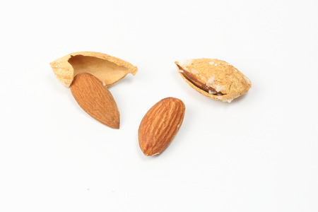 nut shell: Almond nut in shell on white background