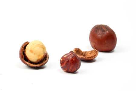 nut shell: Macadamia nut and shell on white background
