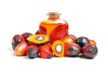 Huile Bouche de bouteille d'aliments à base de palmiste aux fruits entiers mûrs Banque d'images