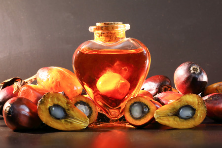 Oil Palm Fruit ripe whole products food bulb bottle Stock Photo