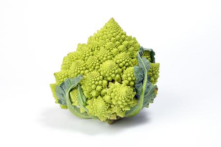 Verde romanico del cavolfiore romano dei broccoli di Romanesco su fondo bianco