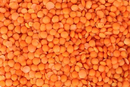Red Masur Dal Lentil Pulse bean