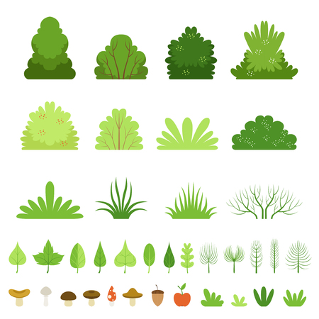 Set of different forest bushes, grasses, leaves of trees, mushrooms and fruits. Vector cartoon illustration