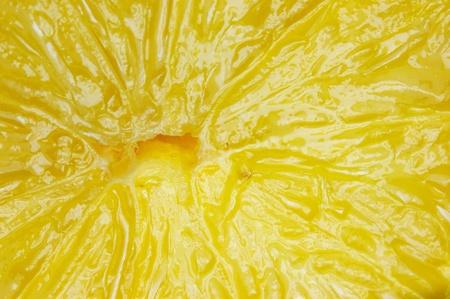 Close up set of sliced lemon. Stock Photo - 9982163