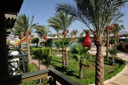 sinay: Hotel. Sharm-El-Sheikh. South Sinay.1-8 july 2014 July 2014 Editorial